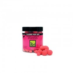 Rod Hutchinson Fluoro Pop Ups Mulberry Florentine